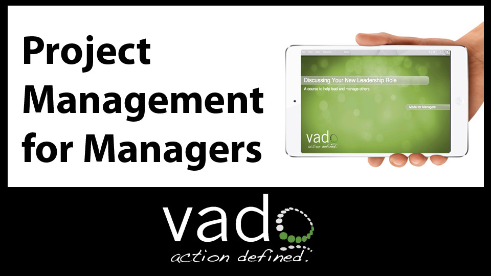 Advanced Project Management for Managers: For Business & Project Management