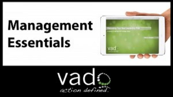 Management Essentials: For Business & Project Management