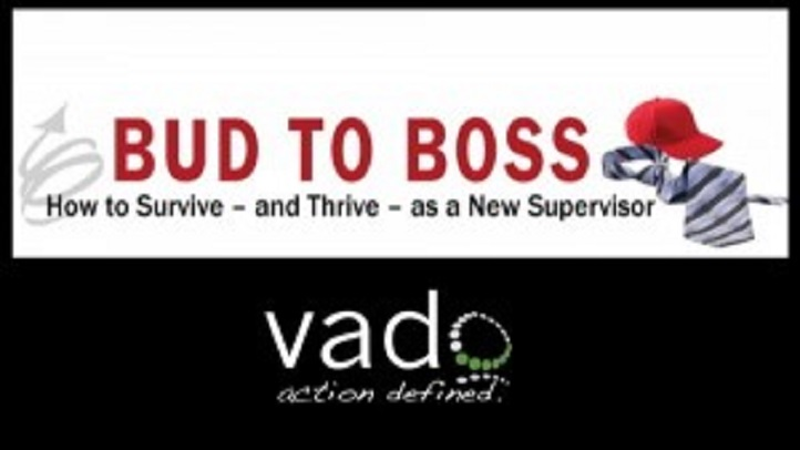 Bud to Boss Toolkit: Coaching for Success: For Business and Project Management