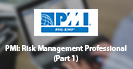 PMI: Risk Management Professional (Part 1)